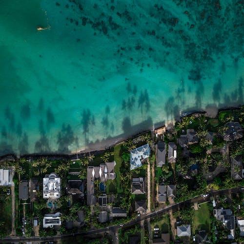 夏威夷, 島, 旅行, 海洋 的 免費圖庫相片