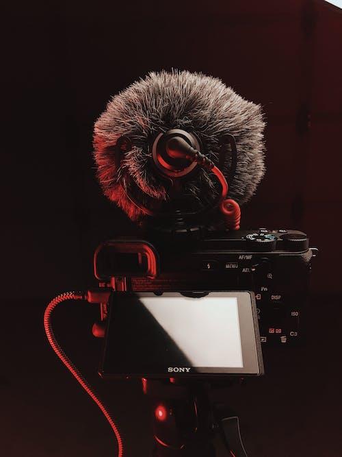 Δωρεάν στοκ φωτογραφιών με sony, γκρο πλαν, εξοπλισμός κάμερας, ηλεκτρονικά είδη