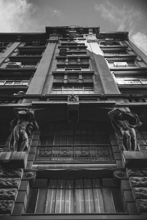 低角度拍攝, 巴西, 市中心, 建造 的 免费素材照片