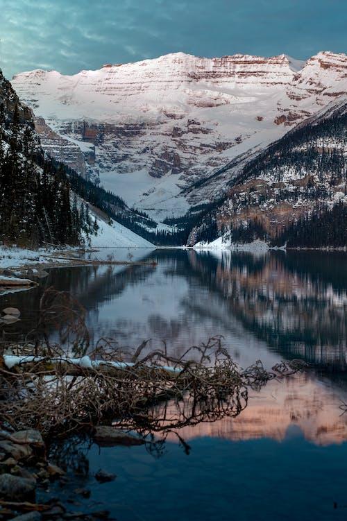 Foto stok gratis air, alam, danau, di luar rumah