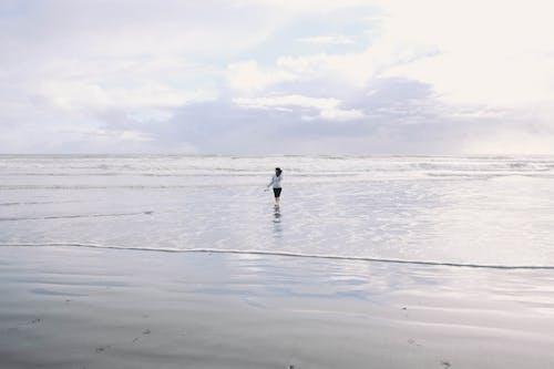 ビーチ, 人, 地平線, 女性の無料の写真素材