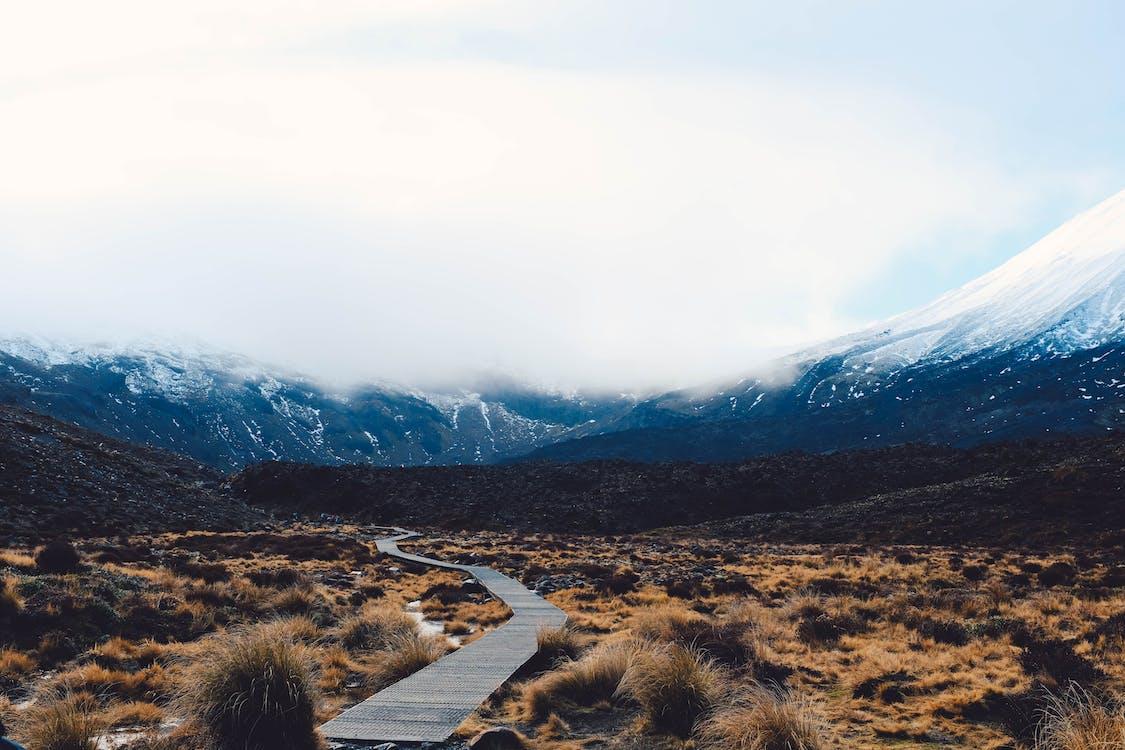 Road toward mountains