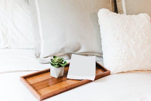 Immagine gratuita di camera, carta, cuscini, cuscino