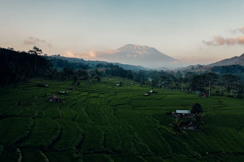 Бесплатное стоковое фото с Бали, гора, дневной свет, долина