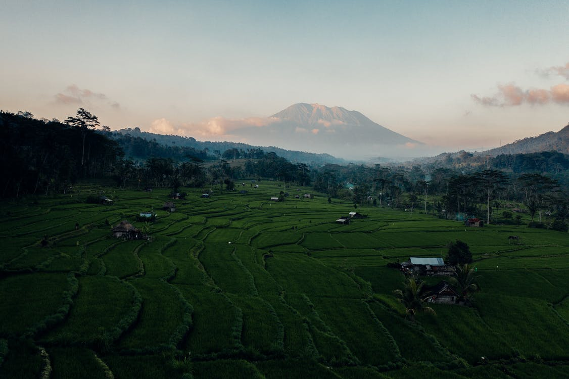 Bali, cestovať, denné svetlo