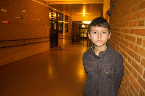 Ilmainen kuvapankkikuva tunnisteilla aula, lapsi, peruskoulu