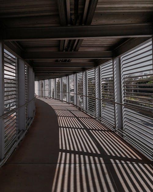 天花板, 室內, 建築設計, 建造 的 免費圖庫相片