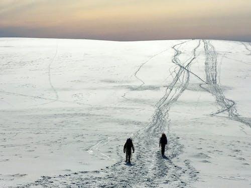cairngorms, iskoçya, kar içeren Ücretsiz stok fotoğraf