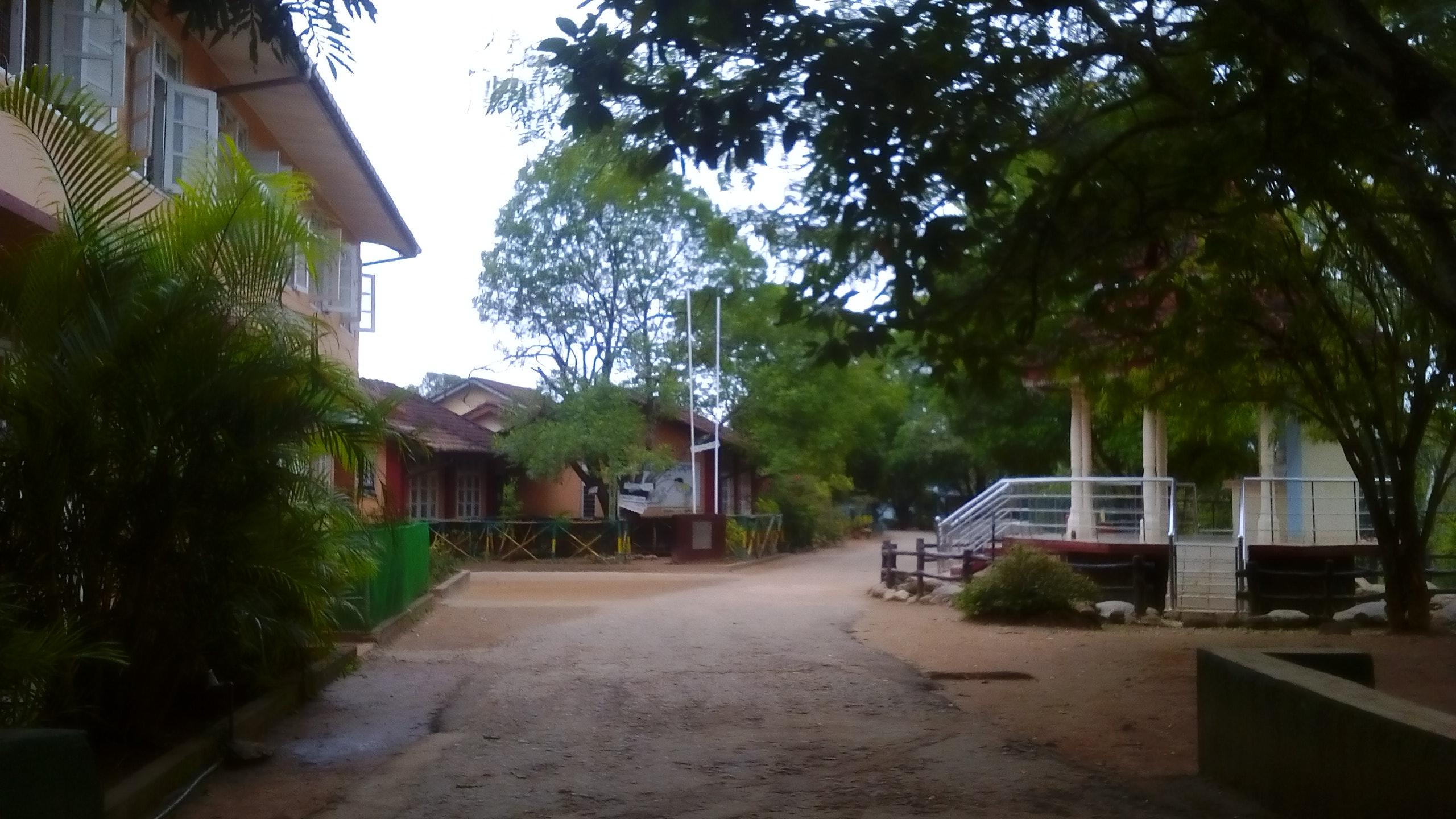 Foto Stok Gratis Tentang Sekolah Dasar Ewadikaram