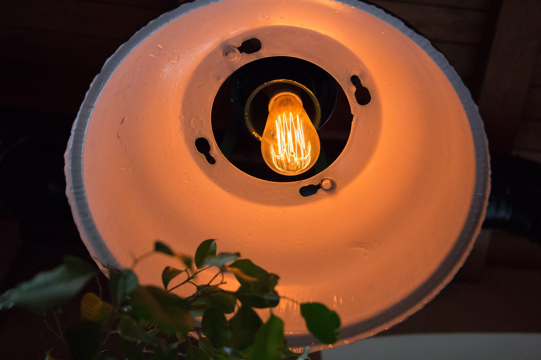 Kostenloses Stock Foto zu die glühbirne, glühbirne, licht