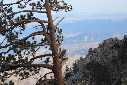 Free stock photo of mountain view, san jacinto mountain