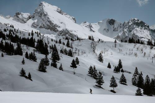 Immagine gratuita di francia, freddo, innevato, inverno