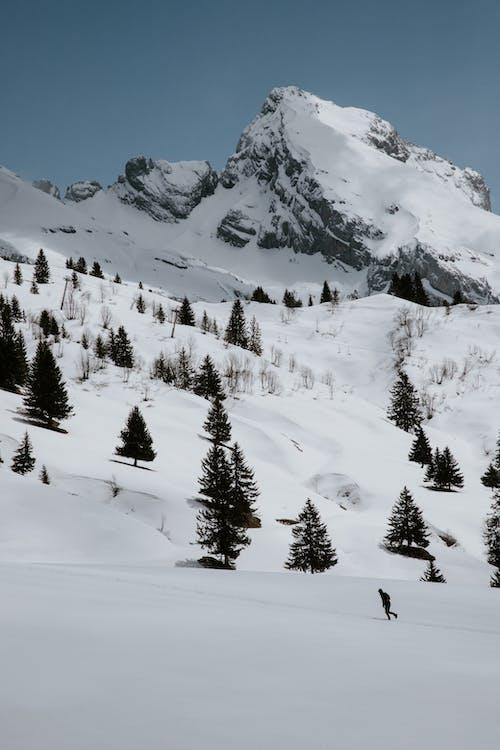 Immagine gratuita di col des annes, francia, freddo, montagna