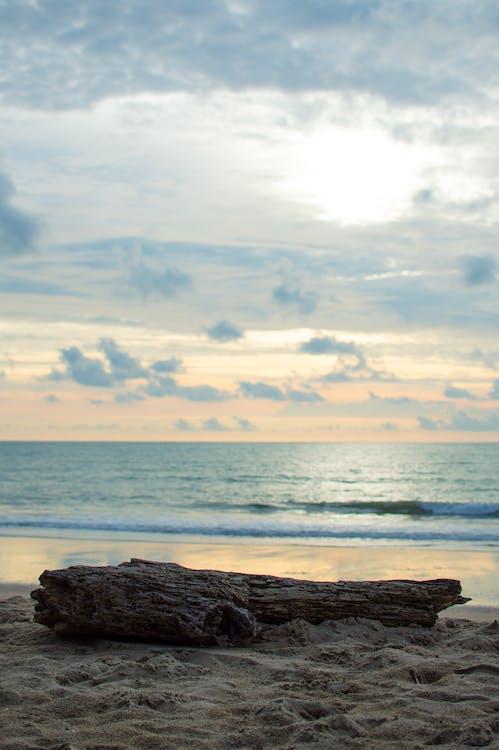 Free stock photo of beach, Phangnga, timber