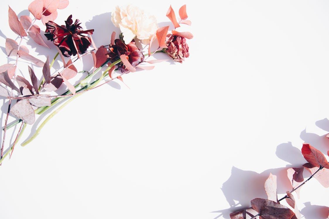 blad, bloem, bloemen