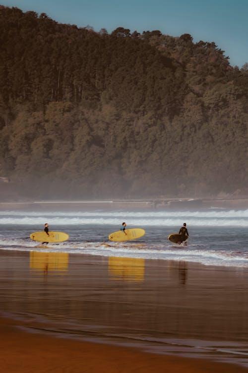 Foto d'estoc gratuïta de acomiadar-se, boira, fent surf, gent