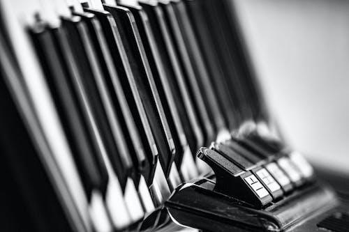 Základová fotografie zdarma na téma acordeon, acordion, černobílá, hudba