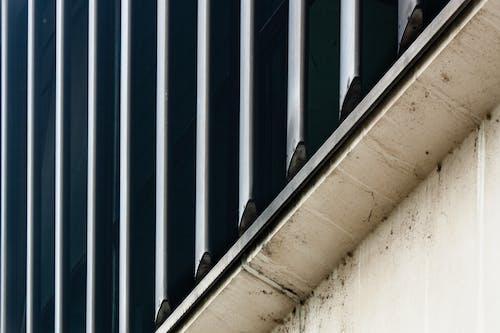 Základová fotografie zdarma na téma architektura, beton, městské fotografie, struktura