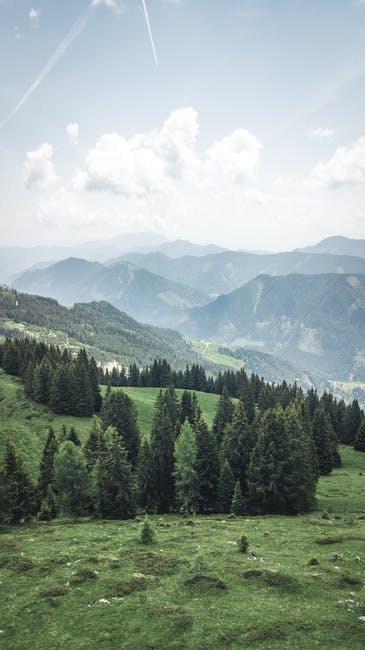 Scenic view of mountain during daytime