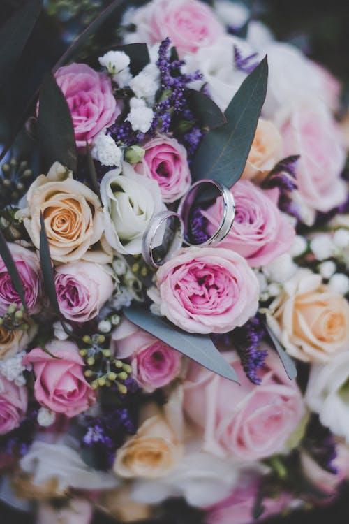 Immagine gratuita di anelli, anelli di fidanzamento, argento, bouquet