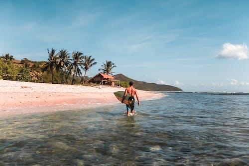 Безкоштовне стокове фото на тему «біля океану, безтурботний, берег, берег моря»