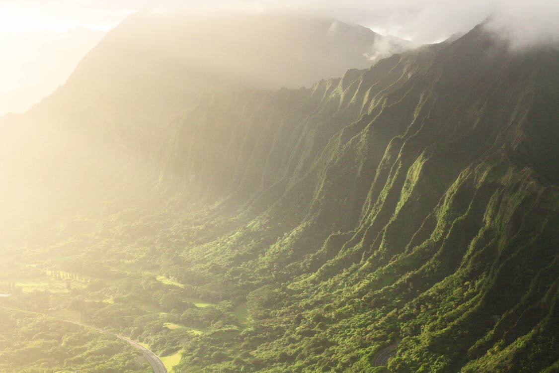 Aerial Photography of Tree Covered Mountain