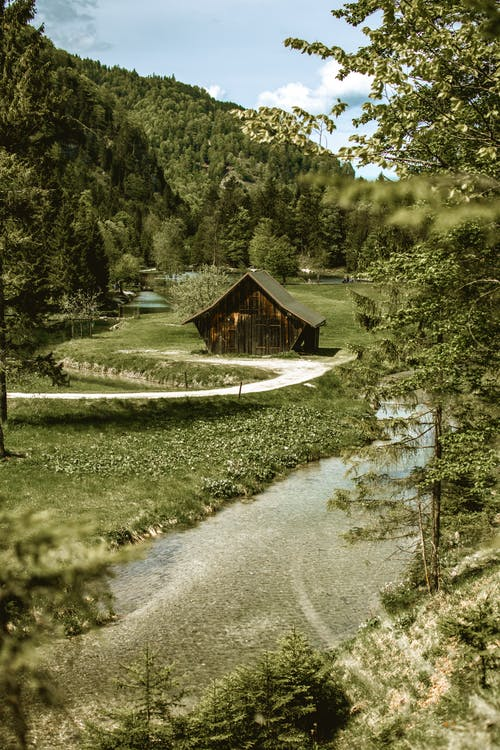 Imagine de stoc gratuită din apă, apă curgătoare, arbori, calm