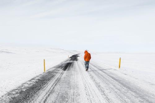 Imagine de stoc gratuită din anotimp, aventură, călătorie, congelare
