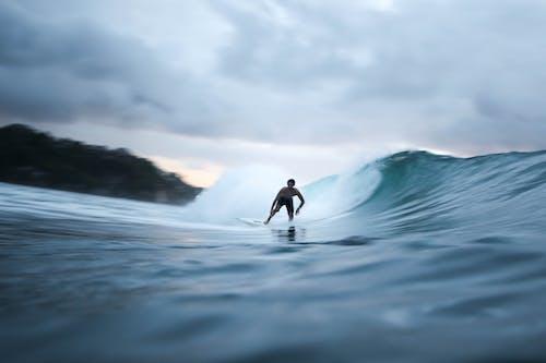 Безкоштовне стокове фото на тему «surfrider, відпочинок, веселість, вода»