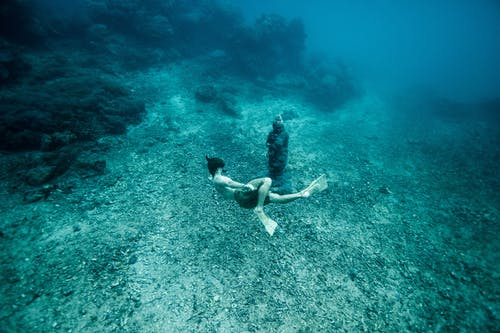 Foto d'estoc gratuïta de aigua, aletes, aventura, blau