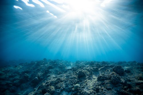 Kostenloses Stock Foto zu grelles sonnenlicht, hell, korallen, licht