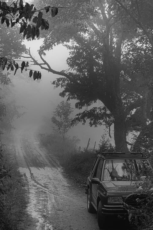 Grayscale Photo of Vehicle Beside Road