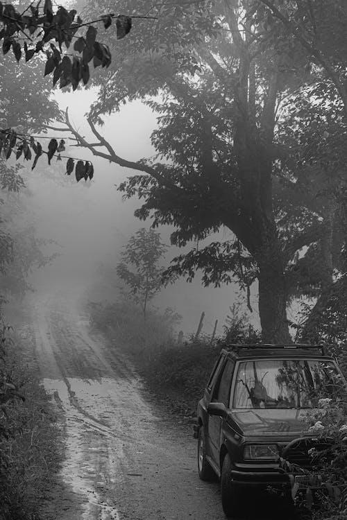 Gratis arkivbilde med kjøretøy, landskap, miljø, natur