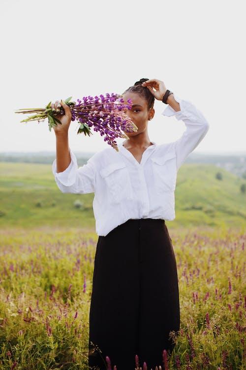 Ảnh lưu trữ miễn phí về cánh đồng hoa, chụp ảnh, giống cái, giữ