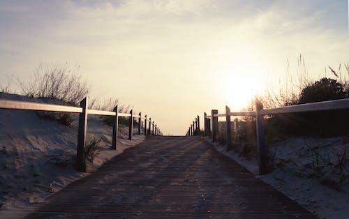 Free stock photo of beach, daylight, fence, horizon