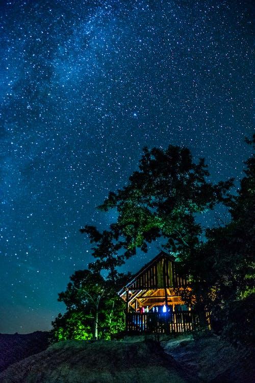Foto d'estoc gratuïta de aigua, arbres, astronomia, capvespre