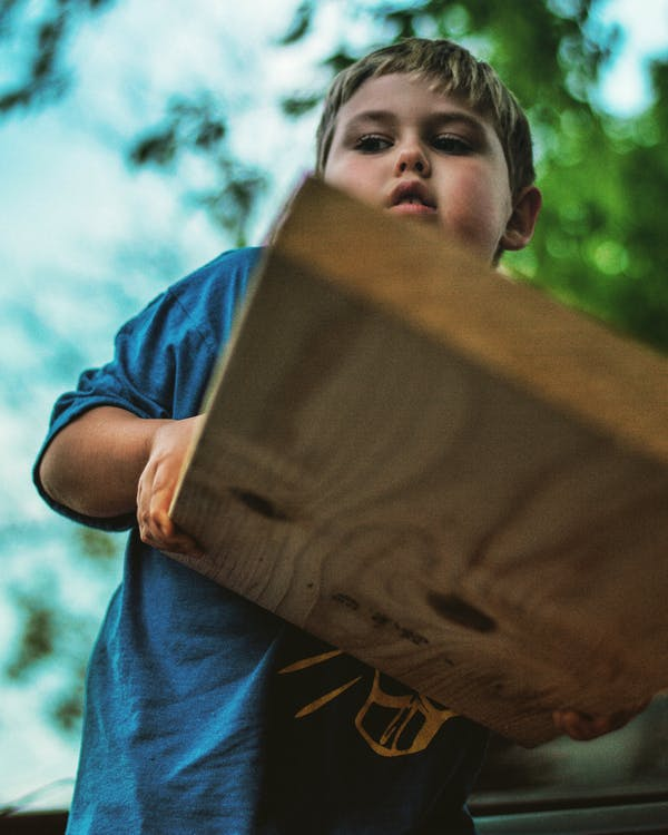 Low Angle Photo of Boy Holding Wooden Panel