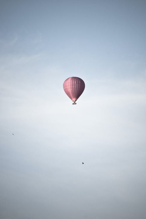 Fotobanka sbezplatnými fotkami na tému mraky, obloha, ružová, teplovzdušný balón