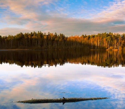 Fotobanka sbezplatnými fotkami na tému bazén, exteriéry, jazero, jeseň