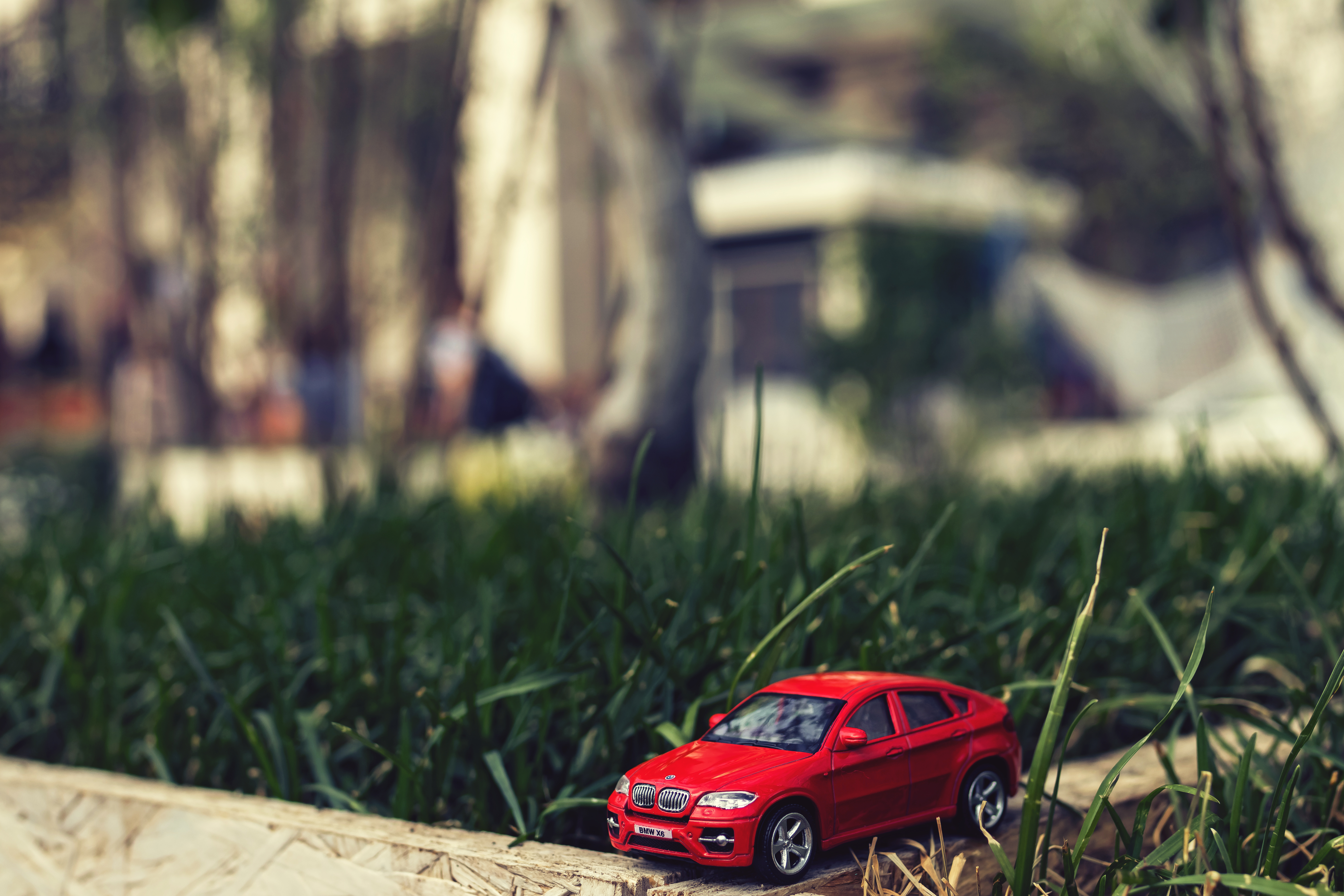 Red Bmw Car Scale Model by Grass
