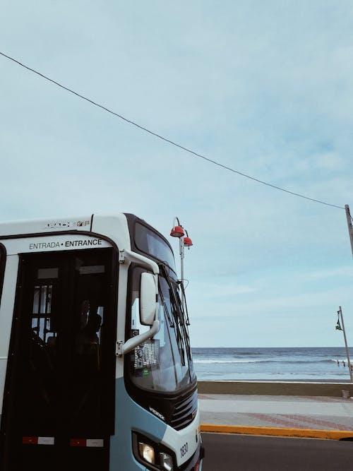 アクション, トラフィック, バス, 交通機関の無料の写真素材