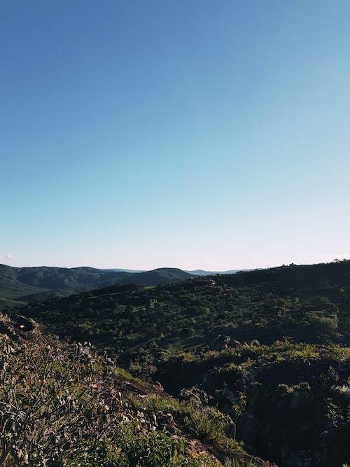 Δωρεάν στοκ φωτογραφιών με αυγή, βουνό, γρασίδι, δέντρα