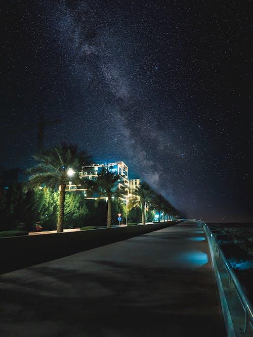 Kostenloses Stock Foto zu abend, architektur, asphalt, bäume