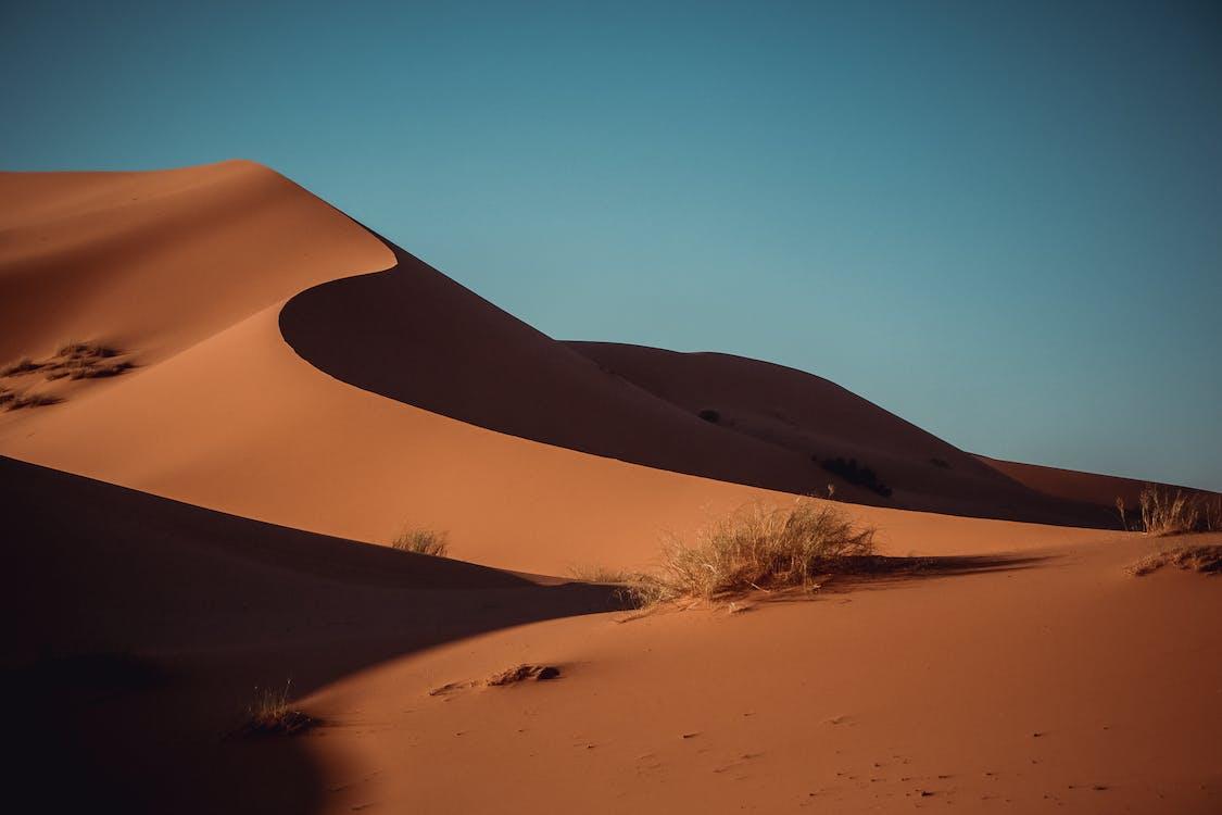 çekici, çöl, doğa