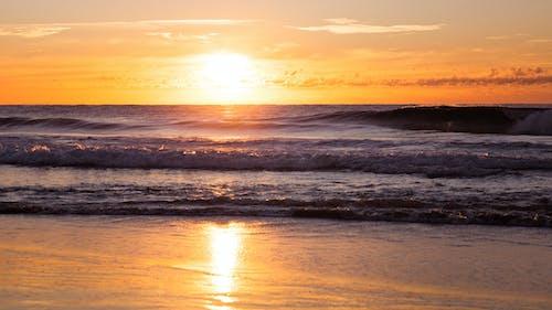 Free stock photo of australia, beach, Gold Coast