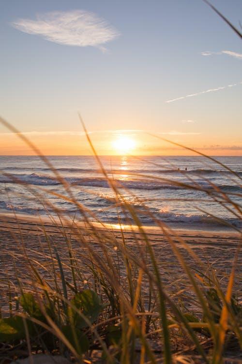 cestování, dovolená, horizont