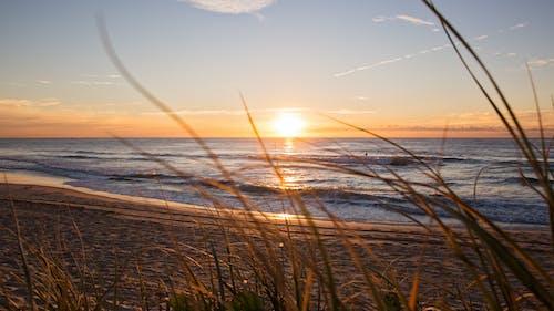 akşam, akşam karanlığı, Avustralya, deniz içeren Ücretsiz stok fotoğraf