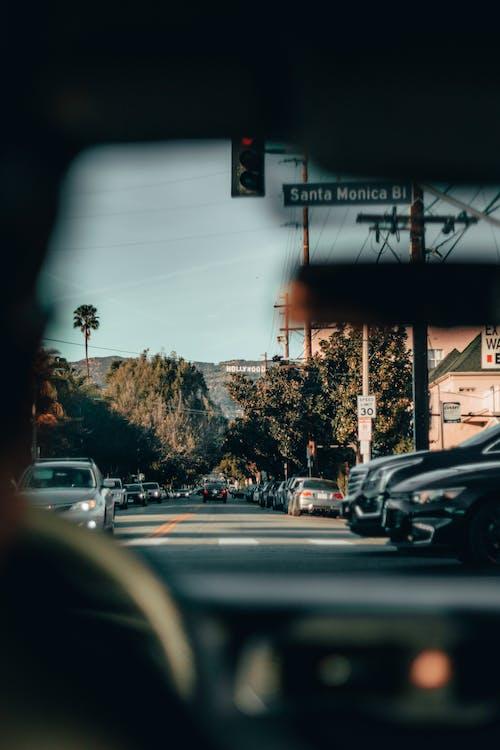 거리, 교통체계, 나무, 도로의 무료 스톡 사진