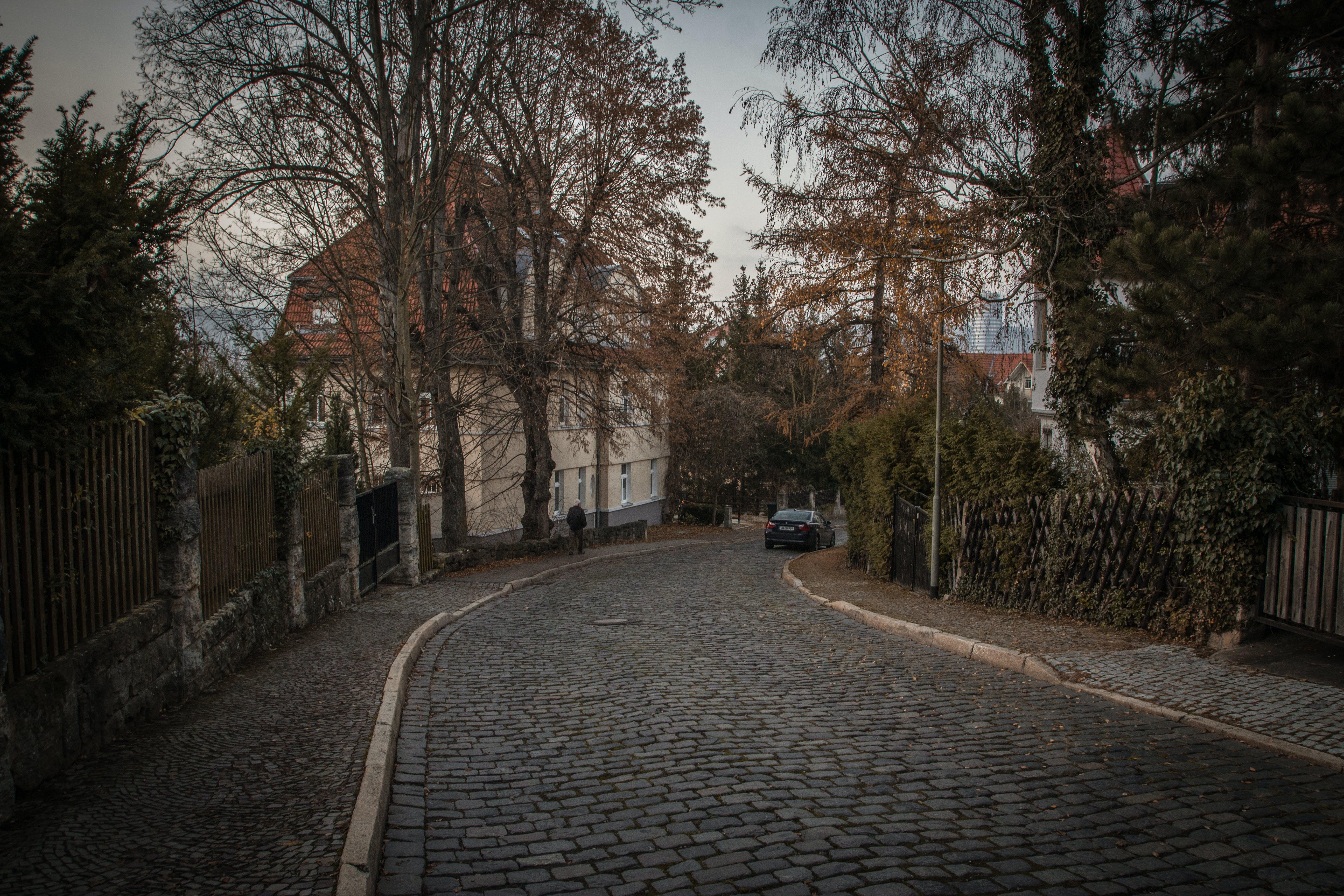 Free stock photo of autumn, germany, nature, sidewalk