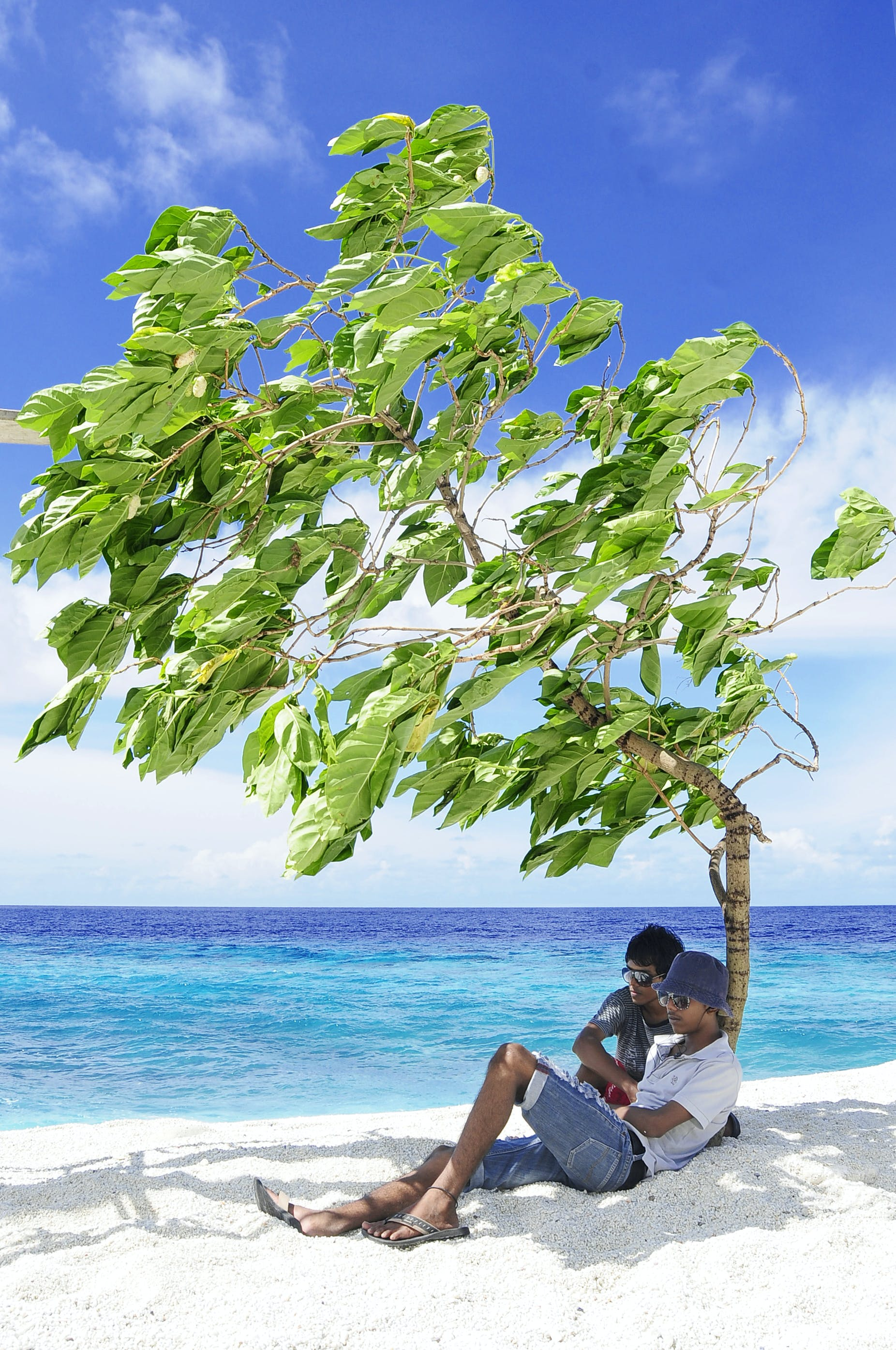 Free stock photo of sea, nature, sky, sunny